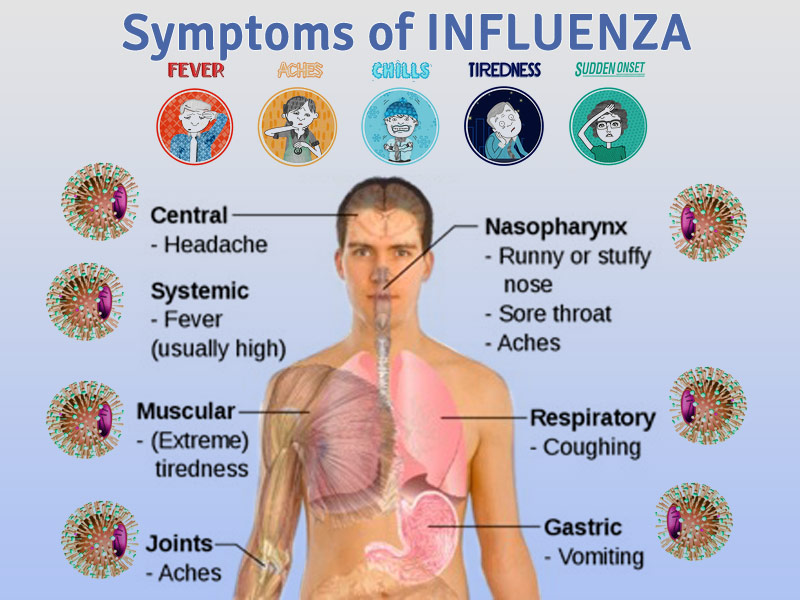 """Symptoms that you have flu"""